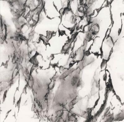 Marbre | veine noire