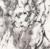 Marbre   veine noire
